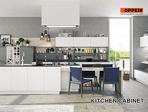 Kitchen Cabinets01