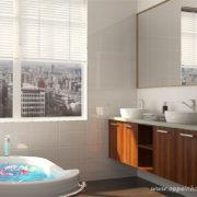 卫浴12(1)